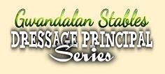 Gwandalan Stables Dressage Principle Series - Series 4